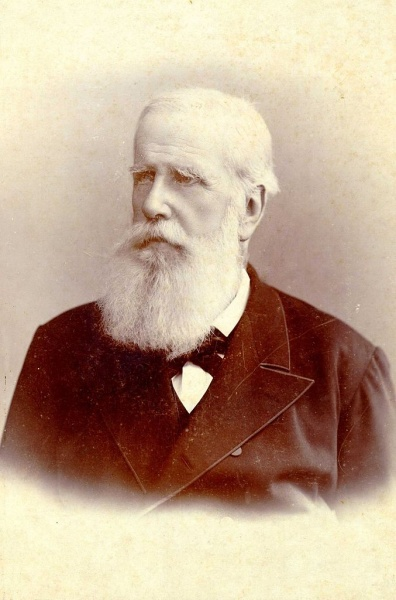 Pedro II by Hermann Witte